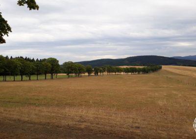 Droga do wsi Albrechcice